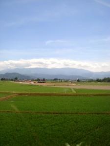 YAMAGATA 2010.